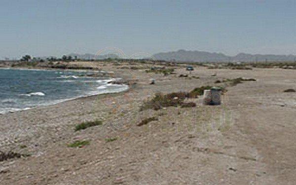 Playas para perros en Región de Murcia