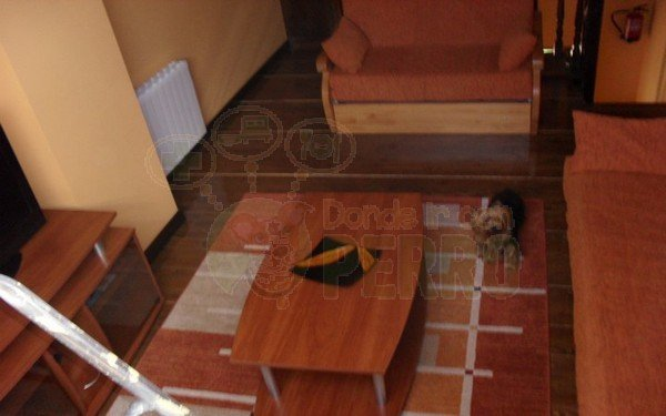 el gaitero son tres apartamentos que admiten perros en Asturias